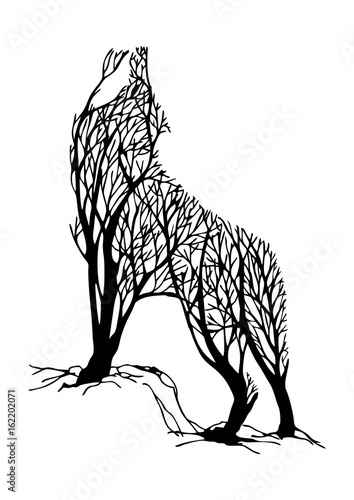 Mysterious aggressive Wolf howl silhouette double exposure