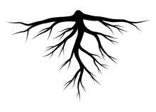 Root Silhouette Vector Symbol ...