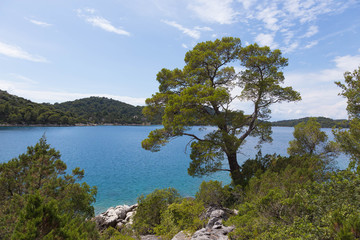 Fototapeta na wymiar View of Big Lake of Mljet Nature Park Croatia