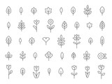 Fototapeta Kwiaty - Leaf and Flower Line Icon Set, Flat, Lines, Vector