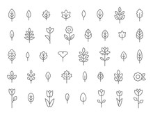 Leaf And Flower Line Icon Set,...