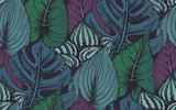 Vector seamless pattern with compositions of hand drawn tropical plants - 162215476