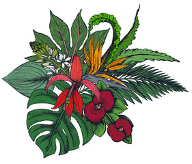 Fototapeta Do Spa Vector composition of hand drawn tropical flowers, palm leaves, jungle plants