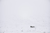 Lonely house in the snowy mountains, winter minimalism, square photo - 162220854