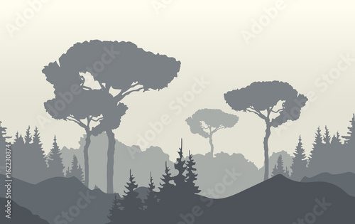 Poster Gris Nature landscape background with foggy sunrise, mountains and trees. Vector illustration.