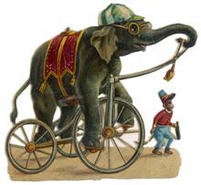 Circus Elephant - Monkey. Date...