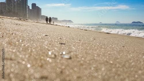 Tiny jellyfish on the beach - Barra da Tijuca - Rio de Janeiro - Brazil Canvas Print