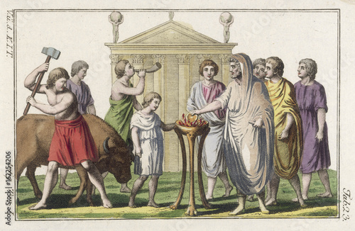 Roman Sacrifice a Bull Wallpaper Mural