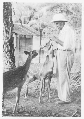 Fotografia, Obraz  Schweitzer - Postcard 1956. Date:  1875 - 1965