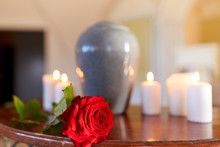 Red Rose And Cremation Urn Wit...