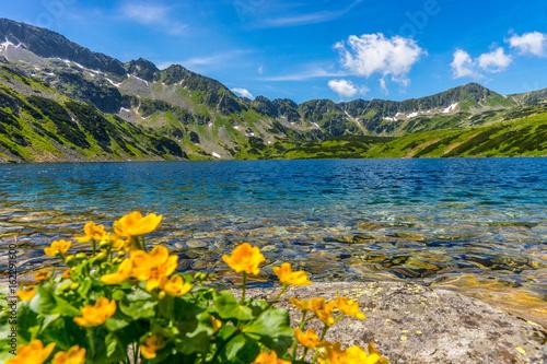 Obraz Tatry, Dolina Pięciu Stawów Polskich, Pejzaż górski z kwiatami - fototapety do salonu