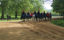 British Horseguard In Hyde Park, London