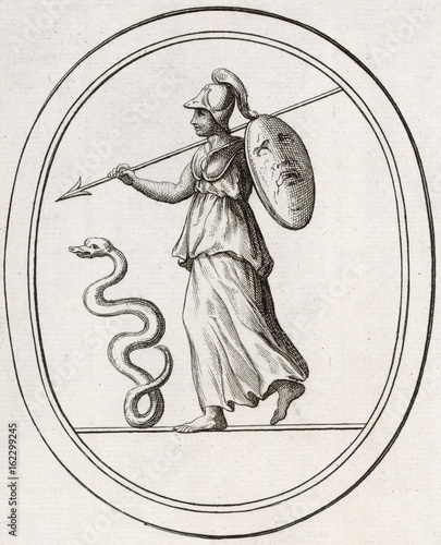 Carta da parati Athena - Minerva