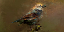 Painted Scenic Bird Sitting On A Branch