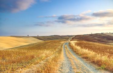 Fototapeta Inspiracje na jesień Cammino colorato