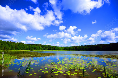 Photo Stands Lake view of the lake's shore in Masuria District, Poland