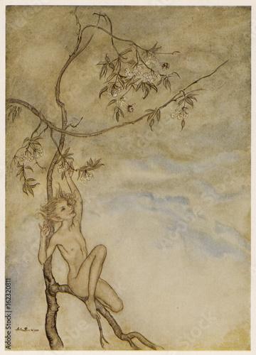Fotografie, Obraz  Myth - Mythology - Ariel