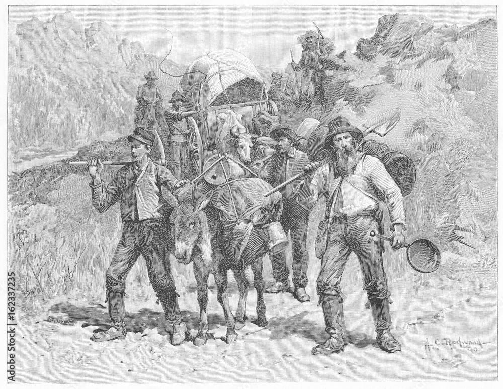 Fototapety, obrazy: Gold prospectors in California. Date: 1851