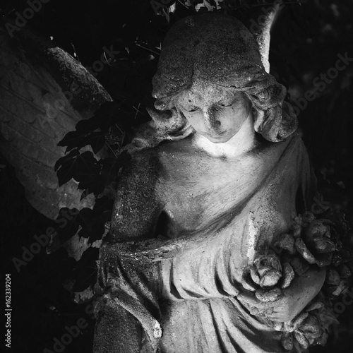 Cadres-photo bureau Inspiration painterly golden angel in the sunlight on a dark background