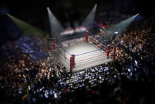 Empty Boxing Ring Surrounded W...