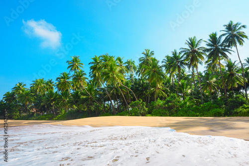 Staande foto Tropical strand Beach on tropical island with lush green coconut palm trees and clean sand at clear sunny summer day