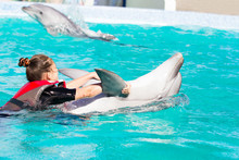 Girl And Dolphin Swim Together