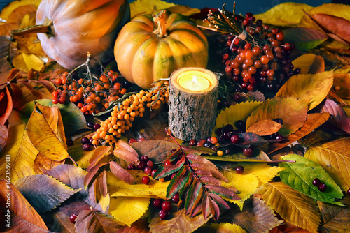Fototapety, obrazy: Gifts of autumn. harvesting. Leaves, different berries, pumpkins, autumn simple still life.