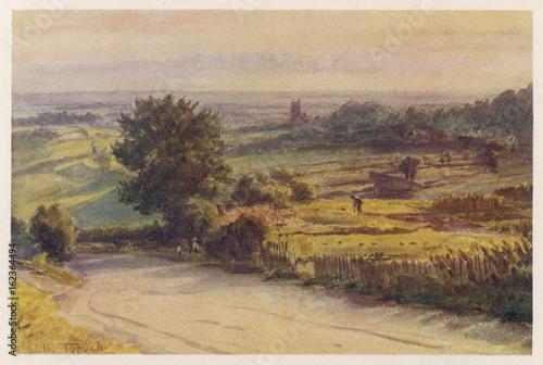 Blackmore Vale - Wessex. Date: 1906 Tablou Canvas