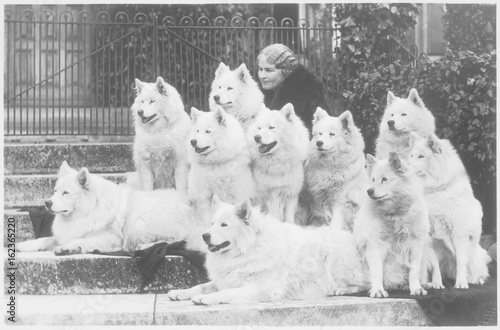 Tela  M Keyte Perry and Samoyeds. Date: 1935