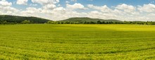 Grassy Country Farmland
