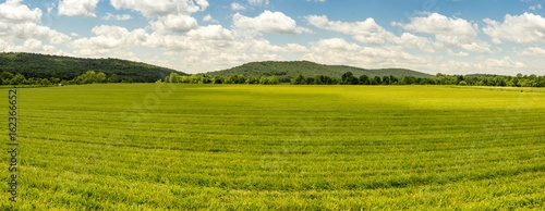 Grassy Country Farmland Wallpaper Mural