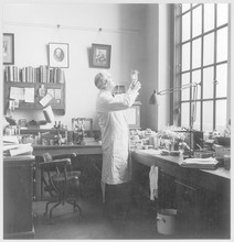 Fleming In His Lab - Photo. Da...