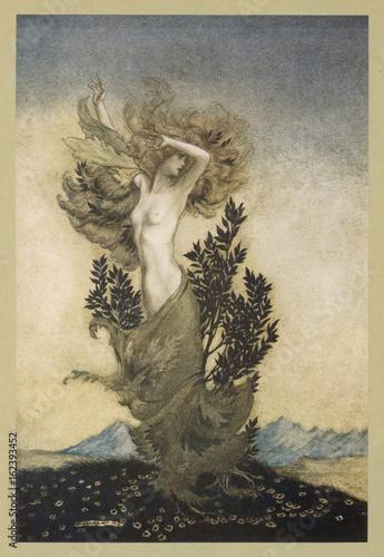 Daphne into Tree Wallpaper Mural