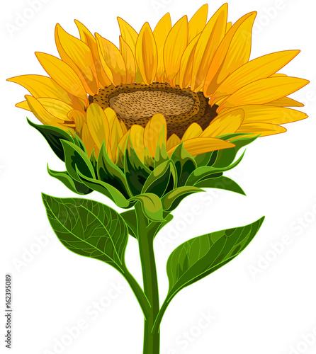 Garden Poster Fairytale World Sunflower