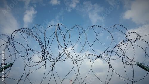 Fotografiet Filo spinato in campo di concentramento