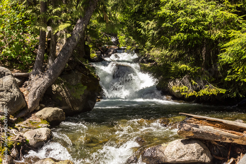 Fototapeten Forest river Raging waters