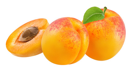 apricot isolated on white