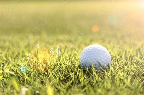 Plakat Pole golfowe zielone