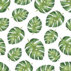 fototapeta zielone liście tropikalne