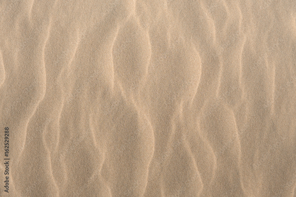 Fototapeta sand texture background