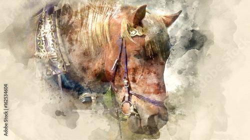 Horse eats hay clous up. Watercolor background