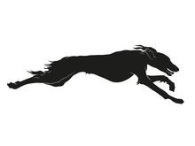 Running Saluki Sighthound Silh...