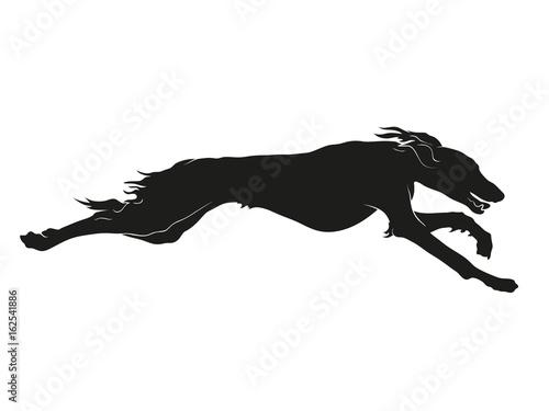Canvas-taulu Running Saluki sighthound silhouette