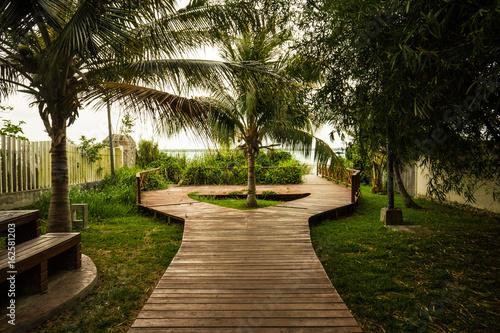Papiers peints Jardin Tropical Walkway