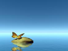 Nature Peace - 3D Render