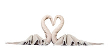 Swan Towel Hotel Decoration, Isolated On White Background, With Clipping Path