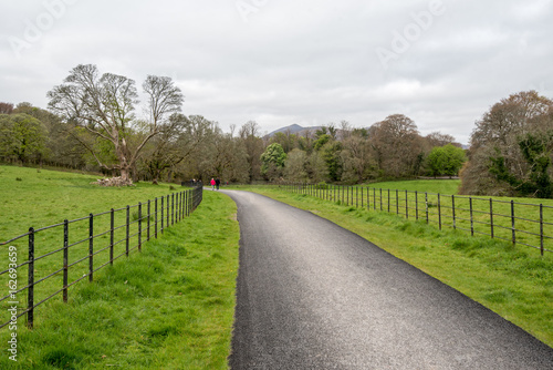 Photo  Road to Muckross Abbey