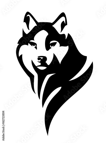 wolf (canis lupus) head en face black and white vector design © Cattallina