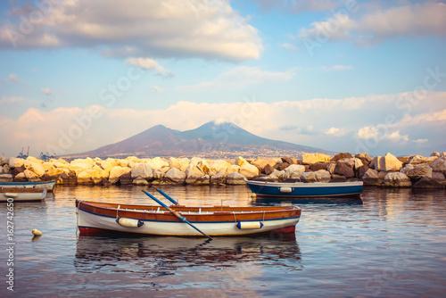 Foto auf Gartenposter Neapel Vesuvius