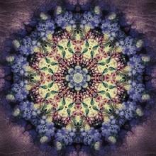 Low Key Floral Kaleidoscope Pattern